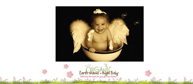 Earth Mama Angel Baby