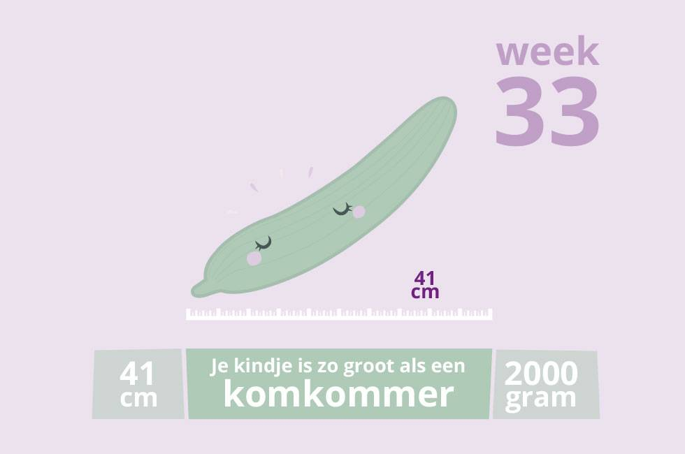 Zwanger! #33
