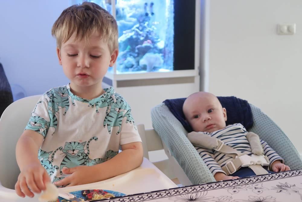 Sterrenbeelden van de kids: schorpioen en stier