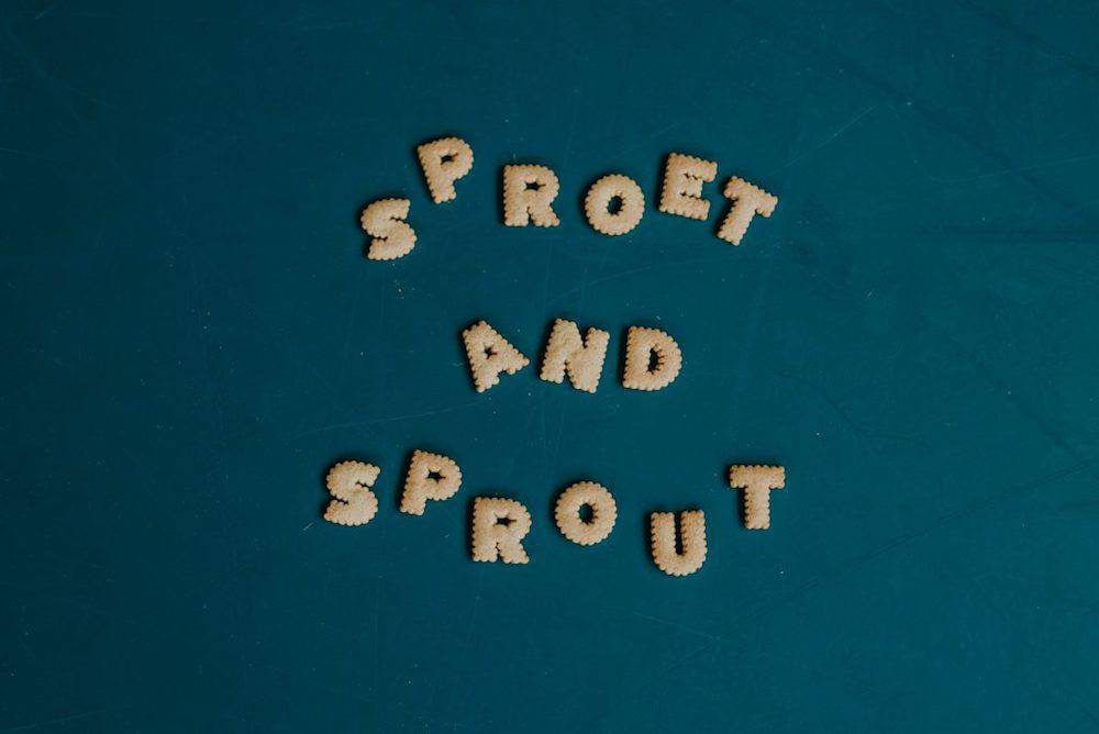 Sproet & Sprout winter '18/'19 is waanzinnig!