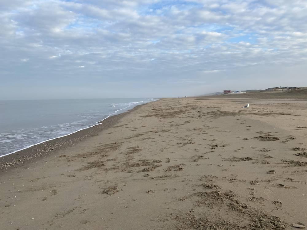 DIARY: werken bij het strand, Coronatest & Sinterklaas