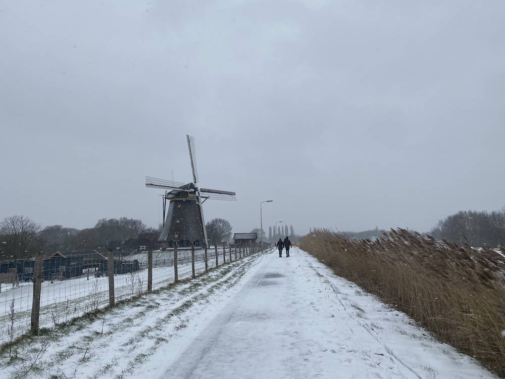 DIARY: deadline voor m'n boek, online cursus & sneeuwpret